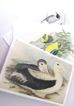 Goulds birds cards